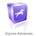 Equine Joint Injections